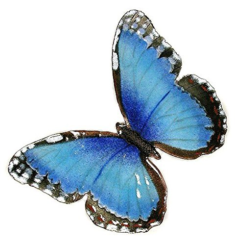Bovano Wall Art Blue Morpho Butterfly with Open Wings made in New England