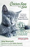 img - for Chicken Soup for the Soul: The Cat Really Did That?: 101 Stories of Miracles, Mischief and Magical Moments book / textbook / text book