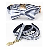 Free Sunday Blue Stripe Seersucker Dog Bow Tie Dog Collar Dog Leash for Small Dog, Medium Dog, Large Dog (Bow Tie Collar and Leash, M(12''-18'' Length))