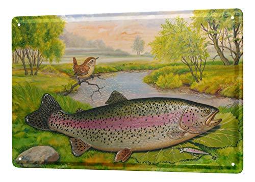 (LEotiE SINCE 2004 Tin Sign Metal Plate Decorative Sign Home Decor Plaques Scholz Fish Species Rainbow Trout Marine Fish Predators Predatory Fish Fishing 20x30 cm)