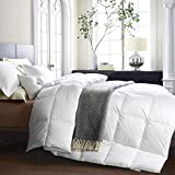 Awenia Goose Down Comforter Queen Size All Seasons Hypo-allergenic Breathable Duvet Insert, 750+ Fill Power, 50 oz Fill Weight, Luxurious White Goose Down Comforter with Tabs, White