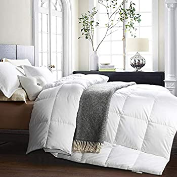 Amazon Com Awenia Goose Down Comforter Queen Size All