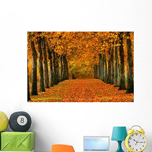 Sycamore Trees Autumn Wall Mural Wallmonkeys Peel and Stick Graphic (48 in W x 32 in H) WM102783 ()