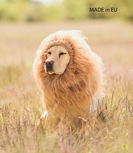 LEONES Dog Costume Lion mane for large dogs Pet Lion wig Halloween Party Made in (Golden Retriever Lion Costume)