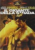 Il Gigante Della Strada by arnold schwarzenegger