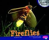 Fireflies, Mary R. Dunn, 1429666498