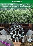C60 Fullerene Softgel Capsules. Each Softgel