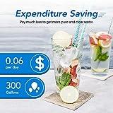 ICEPURE UKF8001 Replacement Refrigerator Water