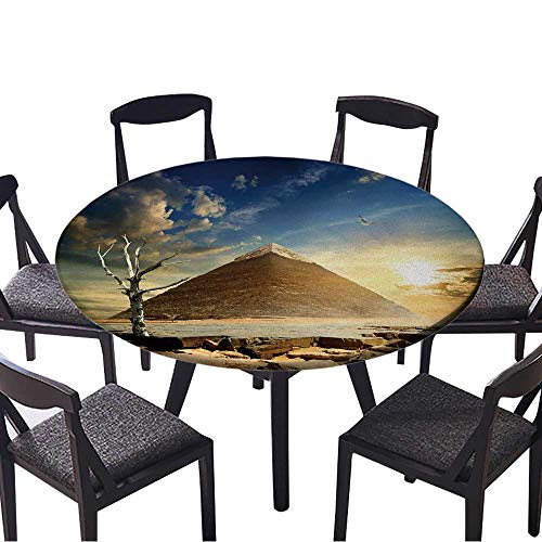 Round Premium Table Cloth Big Bird Over Pyramid and Dry Tree Perfect for Indoor, Outdoor 59