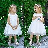 CIELARKO Baby Girl Dress Infant Flower Lace Wedding Party Dresses for 0-24 Months