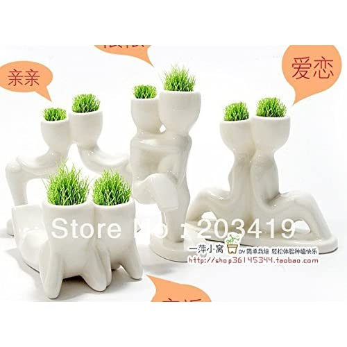 Cheap Creative Gift Plant Hair man X lover Plant Bonsai Grass Doll Office Mini Fantastic Home Decoration wholesale SEEDS ONLY for cheap