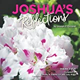 Joshua's Reflections: Volume 2 (Joshua Reflections)