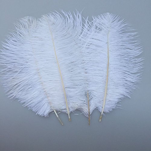 Sowder 20pcs Natural 10-12inch(25-30cm) Ostrich Feathers Plume for Wedding Centerpieces Home (12 Ostrich)