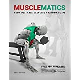 MuscleMatics: Your Ultimate Exercise Anatomy Guide