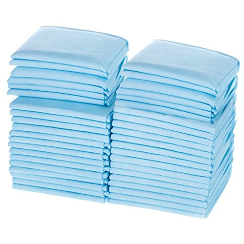 World Deals Disposable Blue Underpad product image