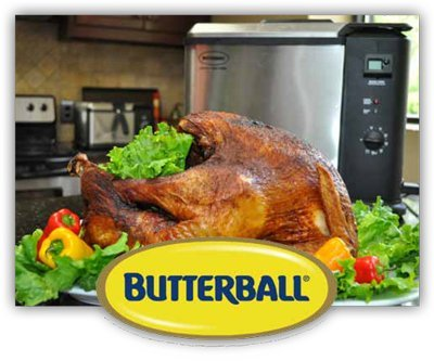 "Butterball Digital Electric Extra Large (XL) Turkey Fryer Stainless Steel 15.7""L x 14.6""W x 14.2""H"