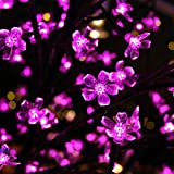 Esky 100 LED Super Bright Waterproof Changing Cherry Led Strip with 8 Controllable Modes- 32.8ft