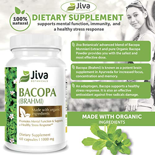 Bacopa Monnieri – 2 Pack – BRAHMI 1000 mg – Nootropics – Brain Supplement – Supports Focus, Concentration, Memory, and Stress Management – Veg Capsules – by JIVA BOTANICALS Total 120 Capsules