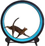Cat Exercise Wheel (Blue)