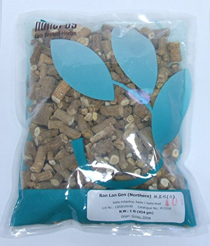 Sore Throat Allergies Cold (Isatis Indigotica Root, Woad Root, Indigo / Ban Lan Gen (Northern) 1lb Bulk Herb (nh))