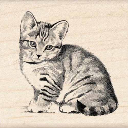 Inkadinkado Kitten Wood Stamp for Scrapbooking 2.25 W x 2.25 L