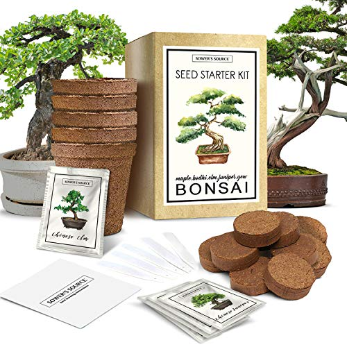 Bonsai Tree Starter Kit | Indoor and Outdoor Beginner Seed Kit, Soil Mix, Biodegradable Planter Pots, Plant Markers, Growing Guide | Grows 5 Unique Trees (Outdoor Tree Seeds Bonsai)