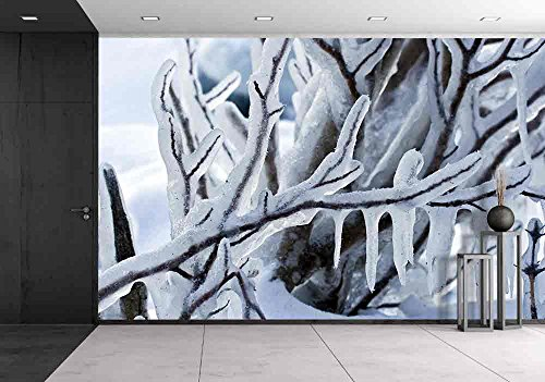 Beautiful Winter Frost Branch Closeup