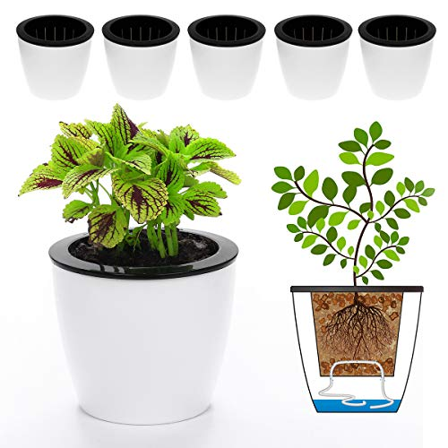 "DElf 6 Pack 6.7"" Self Watering Planter Wicking Pots for"