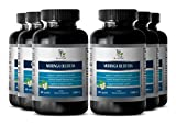 Metabolism vitamins - MORINGA OLEIFERA EXTRACT 1200 MG - Natural supplements for weight loss - 6 Bottle 360 Capsules