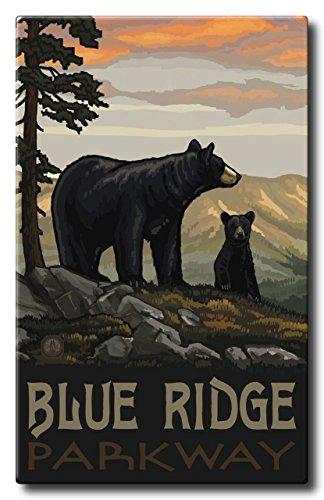 Blue Ridge Parkway Black Bear Family Aluminum HD Metal Wall Art by Artist Paul A. Lanquist ( 22.5
