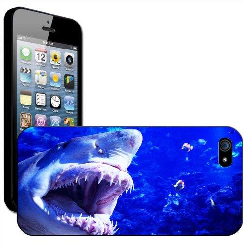 Requin Coque arrière rigide détachable pour Apple iPhone modèles, plastique, iPhone 5/5s