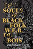 img - for The Souls of Black Folk (Restless Classics) book / textbook / text book