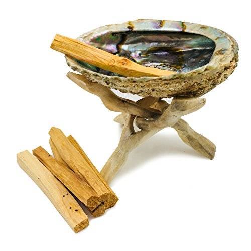 Alternative Imagination Premium Abalone Shell with Natural Wooden Tripod Stand and 6 Palo Santo Sticks by Alternative Imagination