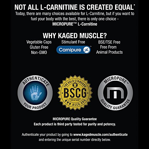Kaged Muscle L Carnitine, 500 mg, Veggie Caps
