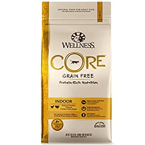 Wellness Core® Natural Grain Free Dry Cat Food, Indoor Chicken & Turkey Recipe, 2-Pound Bag