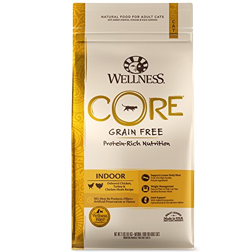 Wellness Core Natural Grain Free Dry Cat Food, Indoor Chicken & Turkey Recipe, 11-Pound Bag ()