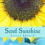 Send Sunshine: For this, The beginning (Volume 1)