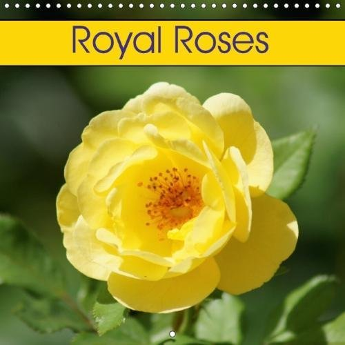 Royal Rose Gmbh The Best Amazon Price In Savemoney Es
