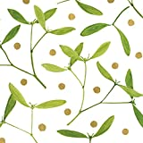 Entertaining with Caspari Mistletoe Paper Linen Cocktail Napkins (15 Pack), White