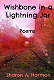 img - for Wishbone in a Lightning Jar: Poems book / textbook / text book