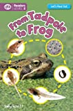 From Tadpole to Frog, Sally Hewitt, 1609926935