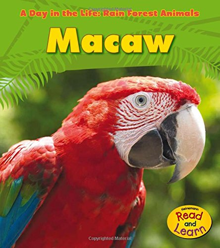 - Macaw (A Day in the Life: Rain Forest Animals)
