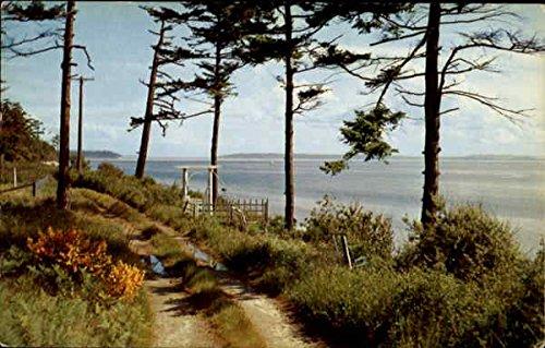 (Admiralty Inlet Puget Sound, Washington Original Vintage Postcard )