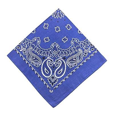 Moilant 100% Cotton Paisley Print Head Wrap Scarf Wristband Soft Bandanas: Clothing
