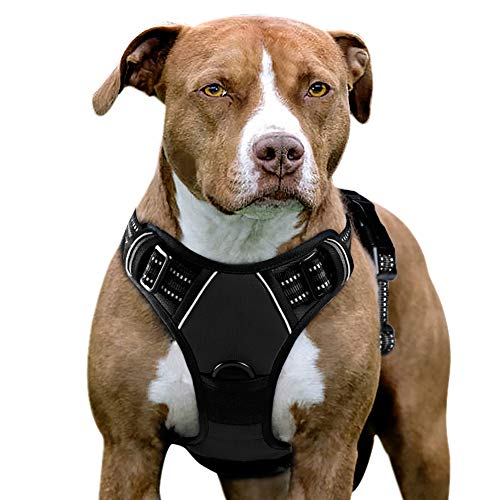 Eagloo Dog Harness No Pull, Walking Pet Harness with 2 Metal Rings and Handle...