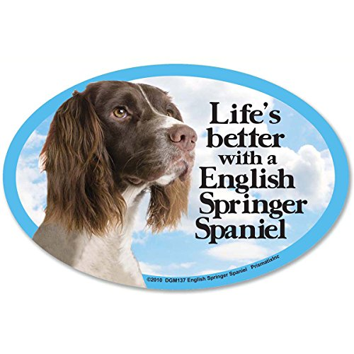 Prismatix Decal Cat and Dog Magnets, English Springer Spa...
