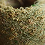 Natural Moss Ball 2PC Green Sphagnum Moss Substrate