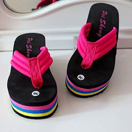 Tongshi Las mujeres sandalias del verano deslizador de interior al aire libre Chanclas Zapatos Rainbow Beach Rose