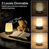 Touch Wake Up Night Light with Alarm Clock