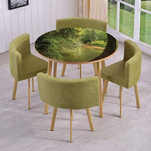 (iPrint Round Table/Wall/Floor Decal Strikers/Removable/Enchanted Forest View with Trees Growth Eco Greenland Summer Serene Landscape/for Living Room/Kitchens/Office Decoration)